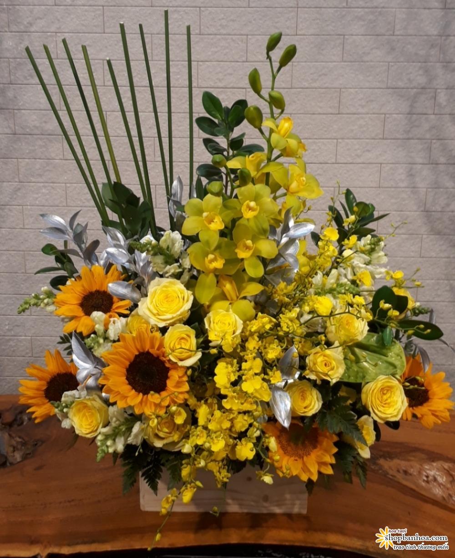 hoa sinh nhat tai thanh hoa