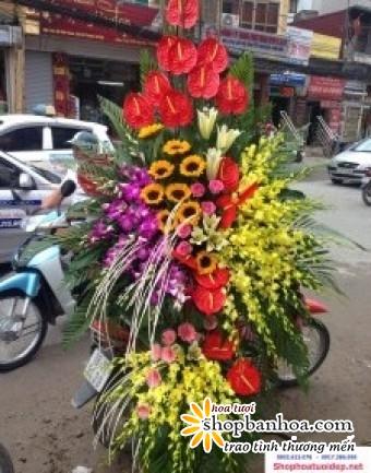 hoa chuc mung khai truong tai thanh hoa