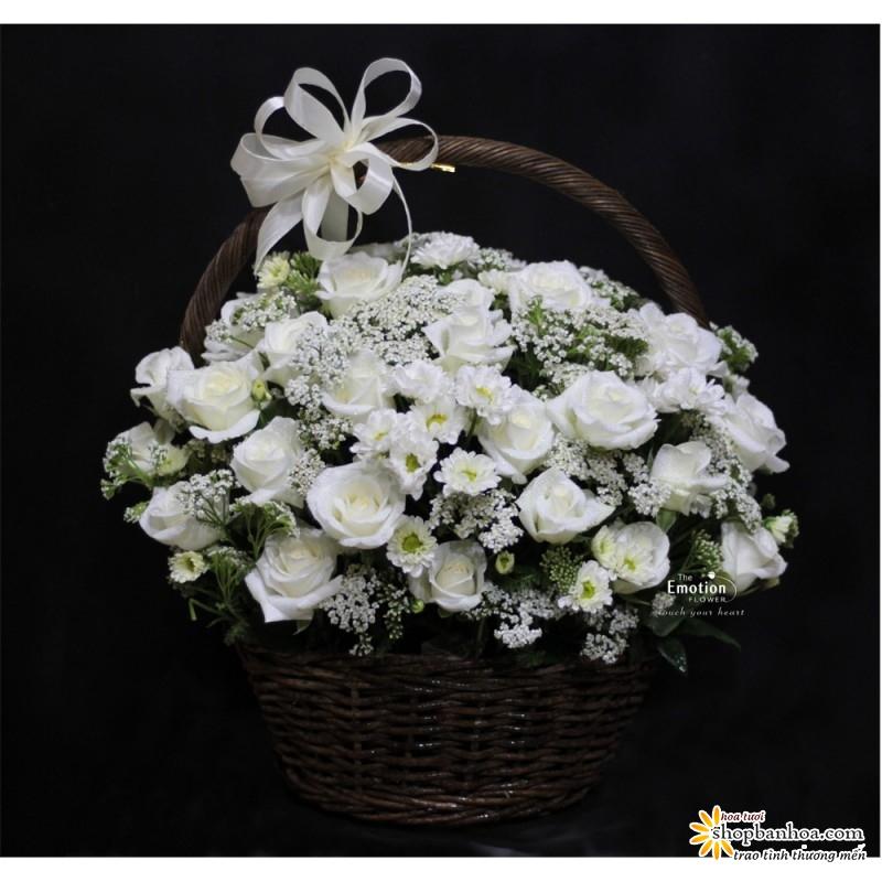 nhung lang hoa chia buon vieng dam tang